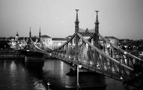 El puente de la Libertad (Budapest,03)