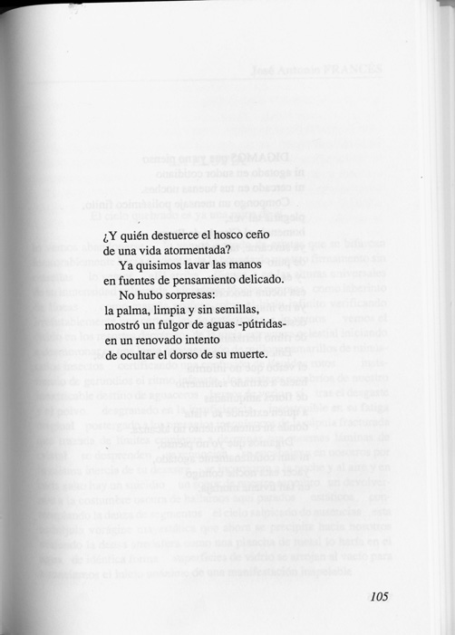 6 Martin