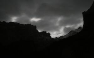 nocturnorosenlauiODP2008